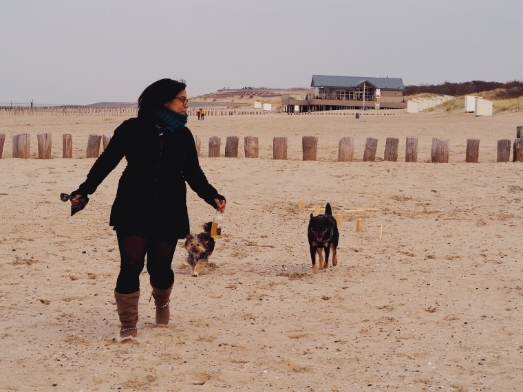 woman running on the beach with dogs